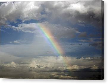 God's Promise Canvas Print