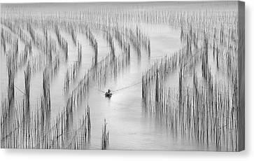 Plantation Canvas Print - Going Back by Angela Muliani Hartojo