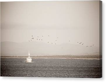 Canvas Print featuring the photograph Going Fishing by Erin Kohlenberg