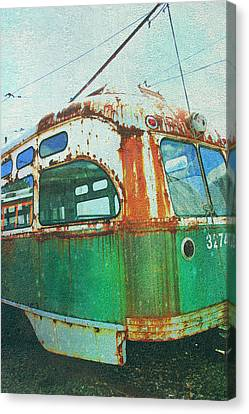 Going Green Canvas Print by Sheryl Bergman