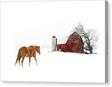 Canvas Print featuring the photograph Going Home by Ann Lauwers