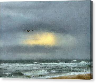 Flying Seagull Canvas Print - Going Home by Jeff Breiman