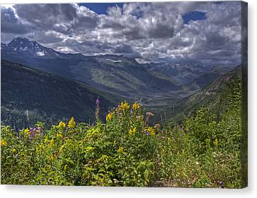 Going To The Sun Road Canvas Print by Darlene Bushue