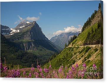 Going To The Sun Road Canvas Print by Natural Focal Point Photography