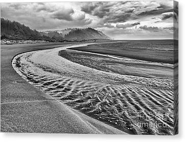 Gold Bluffs Beach Is Located In The Prairie Creek Redwoods State In Black And White. Canvas Print by Jamie Pham
