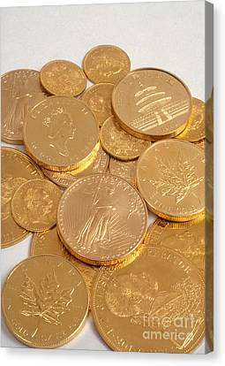 Gold Coins Canvas Print
