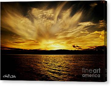 Gold Fan - Sunset Canvas Print by Geoff Childs