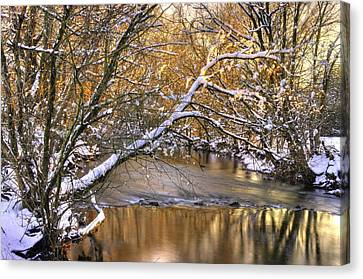 Gold In The Creek B1 - Owens Creek Near Loys Station Covered Bridge - Winter Frederick County Md Canvas Print by Michael Mazaika