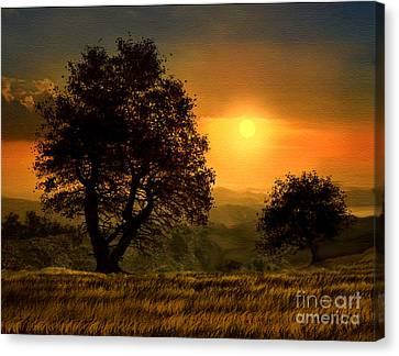 Gold Light Canvas Print by Robert Foster