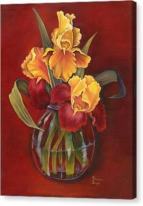 Gold N Red Iris Canvas Print