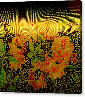 Metallic Sheets Canvas Print - Gold Sheet Floral 1 by Patricia Keith