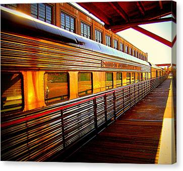 Gold Streak Canvas Print by Rodney Lee Williams