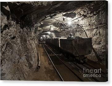 Subsoil Canvas Print - Gold24 by Gleb Klementev