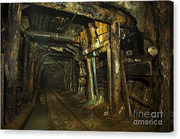 Subsoil Canvas Print - Gold31 by Gleb Klementev