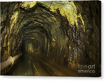 Subsoil Canvas Print - Gold33 by Gleb Klementev