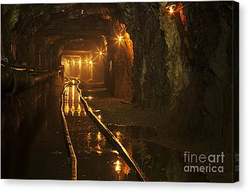 Subsoil Canvas Print - Gold35 by Gleb Klementev