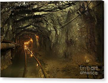 Subsoil Canvas Print - Gold36 by Gleb Klementev