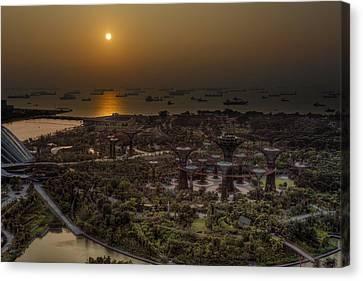 Canvas Print - Golden Bay by Mario Legaspi