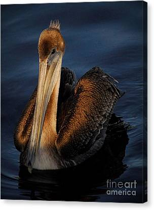 Golden Beauty Canvas Print