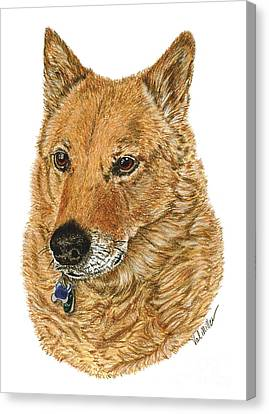Canvas Print featuring the drawing Golden Beauty by Val Miller