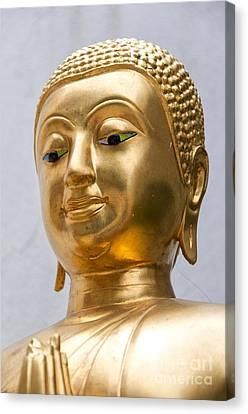 Golden Buddha Statue Canvas Print by Antony McAulay
