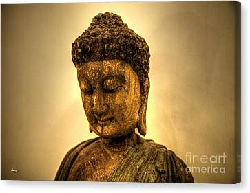 Golden Buddha Canvas Print by T Lang