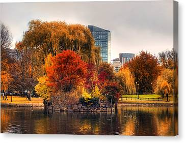 Golden Common Canvas Print