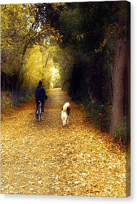 Golden Days Of Fall Canvas Print by Leslie Hunziker