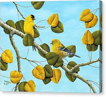 Finch Canvas Print - Golden Days by Rick Bainbridge