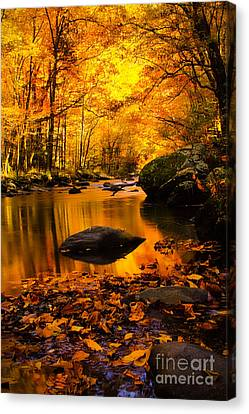 Canvas Print featuring the photograph Golden Dream by Geraldine DeBoer