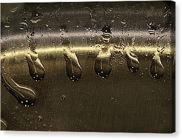 Canvas Print featuring the photograph Golden Droplets by Geraldine Alexander