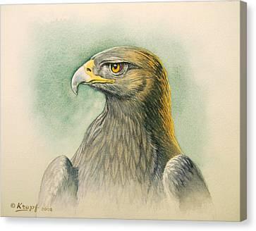 Golden Eagle Portrait Canvas Print