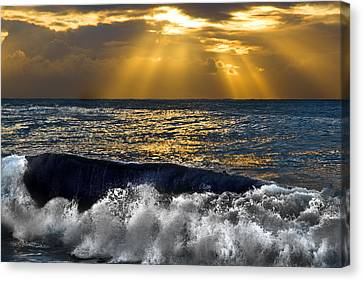 Golden Eye Of The Morning Canvas Print