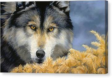 Golden Eyes Canvas Print by Lucie Bilodeau