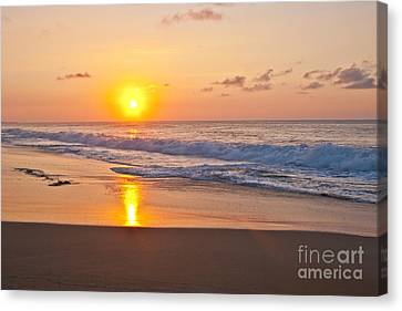 Golden Canvas Print by F Innes - Finesse Fine Art