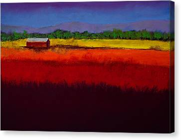 Golden Field Canvas Print by David Patterson