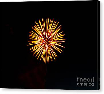 Golden Fireworks Flower Canvas Print by Robert Bales