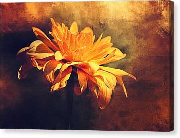 Golden Flower Canvas Print