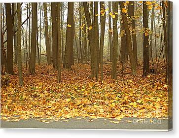 Golden Forest Art Canvas Print by Boon Mee