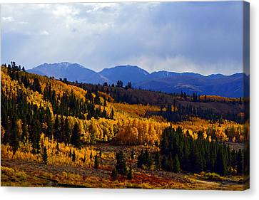 Golden Fourteeners Canvas Print