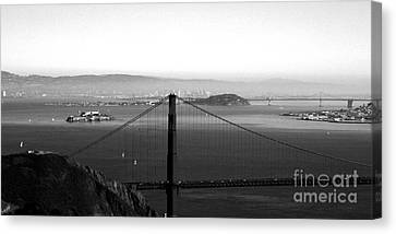 Golden Gate And Bay Bridges Canvas Print by Linda Woods