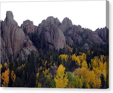 Golden Gold Camp Road Canvas Print by Michelle Frizzell-Thompson