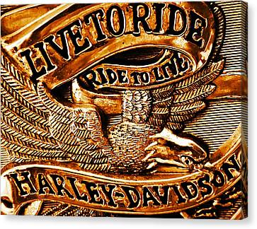 Two Wheeler Canvas Print - Golden Harley Davidson Logo by Chris Berry
