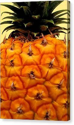 Golden Hawaiian Pineapple Canvas Print by James Temple