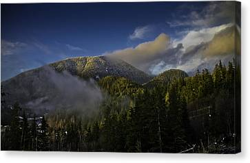 Canvas Print featuring the pyrography Golden Hills Before Sunset. by Timothy Latta