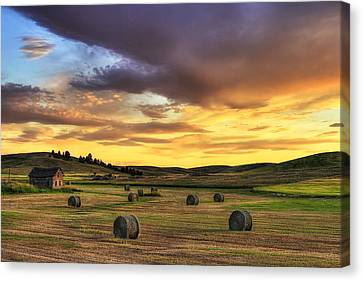 Golden Hour Farm Canvas Print by Mark Kiver