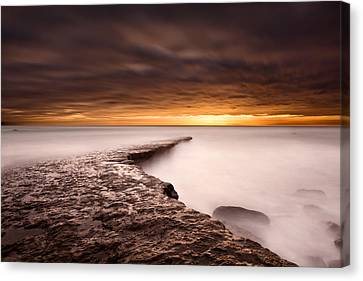 Golden Canvas Print by Jorge Maia