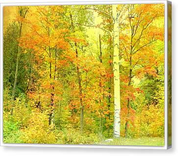 Golden Leaves  Canvas Print by Dianne  Lacourciere