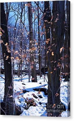 Canvas Print featuring the photograph Golden Leaves by Rafael Quirindongo