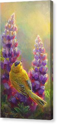 Golden Light 1 Wilsons Warbler And Lupine Canvas Print by Karen Whitworth